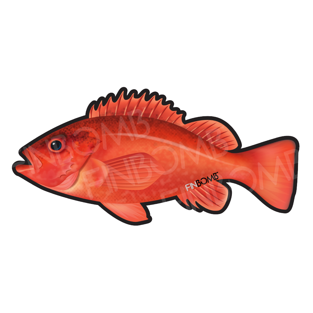 Finbomb Fish Stickers | Fishing Accessories and Apparel